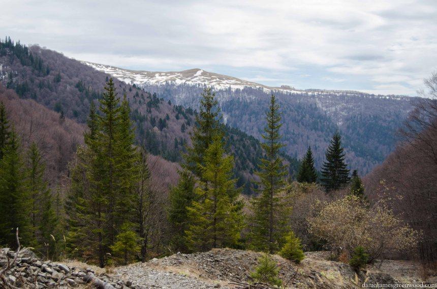 Carpathians lo-res-24