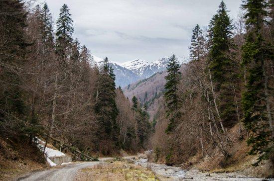 Carpathians lo-res-5