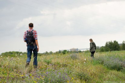 Swanscombe Marshes - 16-8-15 blog pics-6