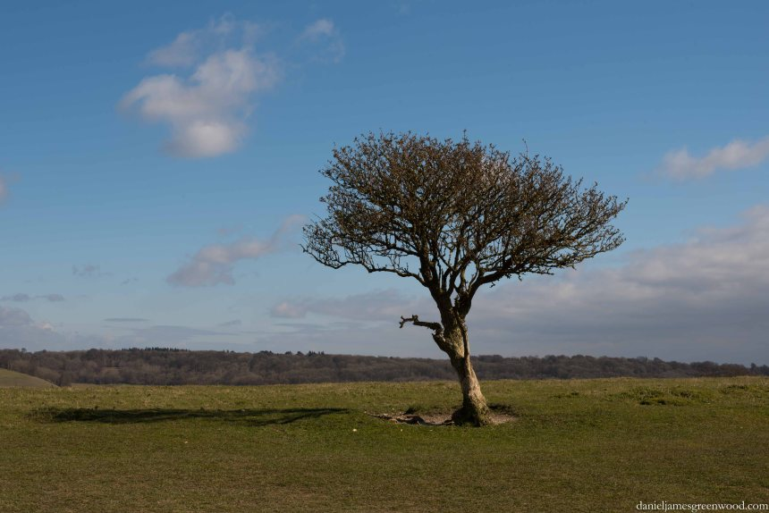 Ivinghoe Beacon, March 2016-2