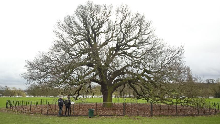Bexley oaks - March 2017 djg-1