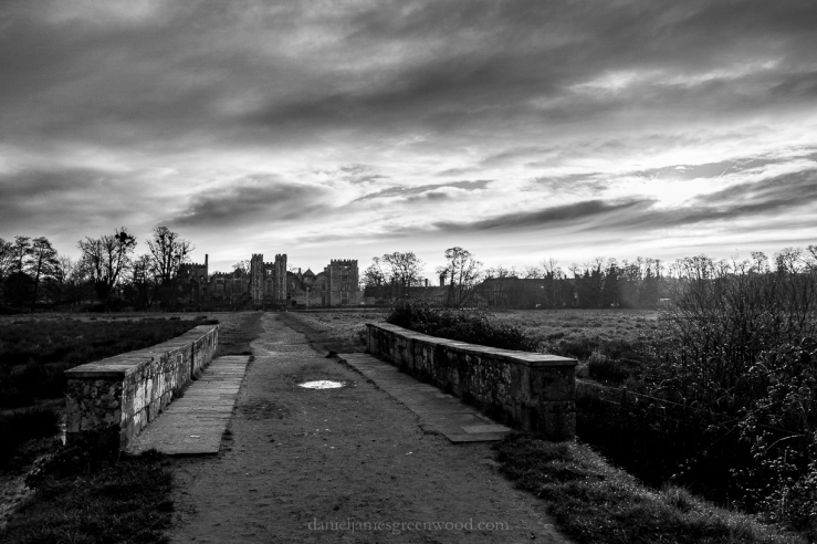 Cowdray - 3-12-2019 blog-2