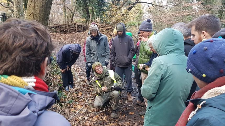 RS2354_Daniel Greenwood Sydenham Hill Wood mushroom 26-11-2017