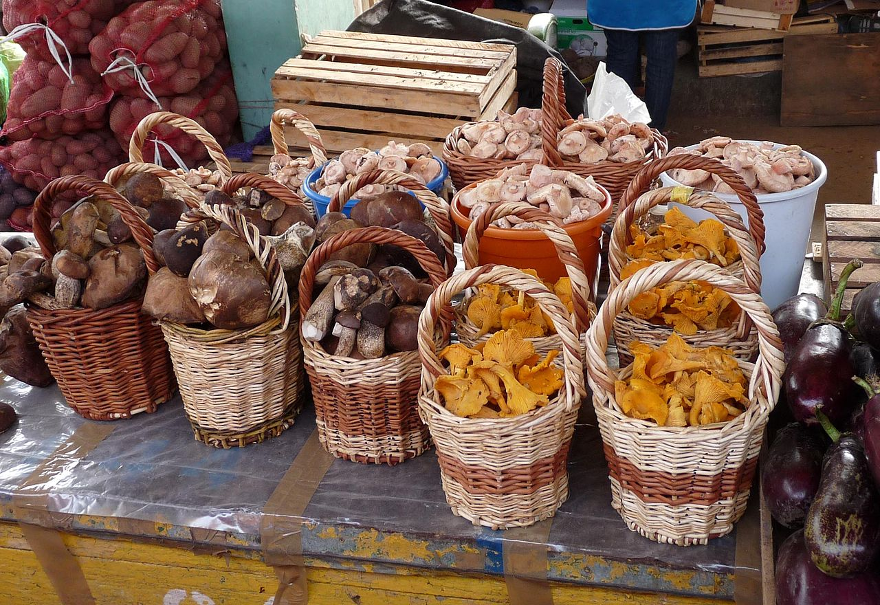 1280px-kostroma_market_18_mushrooms_a1_28412463407929